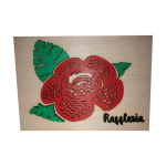 Painted Rafflesia with Frame (A4)