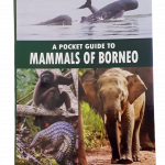 A pocket Guide to Mammals 1